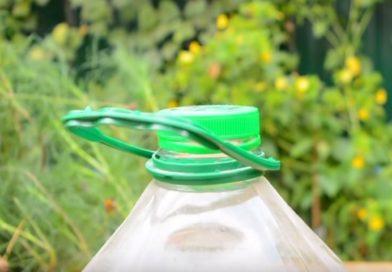 5 способов повторного использования пластиковых бутылок